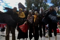 Birds-on-Parade-PH_-Carmen-18._._-scaled