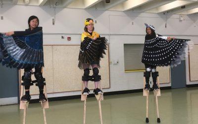 Beginner/Intermediate Stilt Workshops