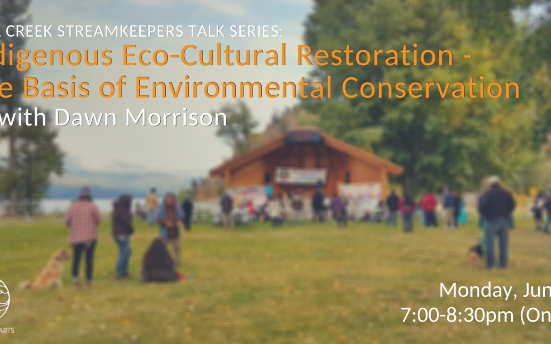 Indigenous Eco-Cultural Restoration – The Basis of Environmental Conservation with Dawn Morrison