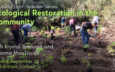 Ecological Restoration in the Community with Krystal Brennan and Deanna MacTavish
