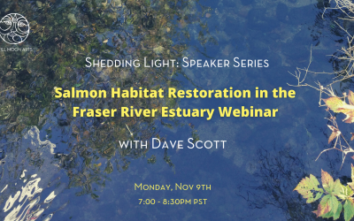 Salmon Habitat Restoration in the Fraser River Estuary Webinar with Dave Scott
