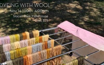 Wool Dye Workshop for Knitting