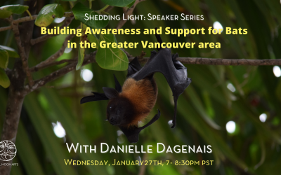 Building Awareness and Support for Bats in the Greater Vancouver Area