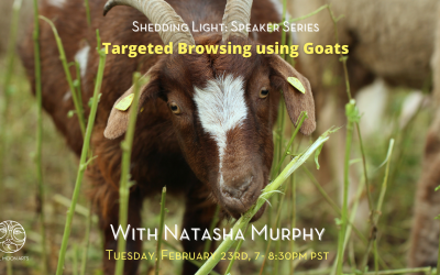 Targeted Browsing Using Goats Webinar with Natasha Murphy