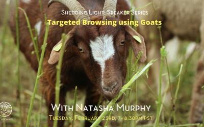 Targeted Browsing Using Goats Webinar with Natasha Murphy