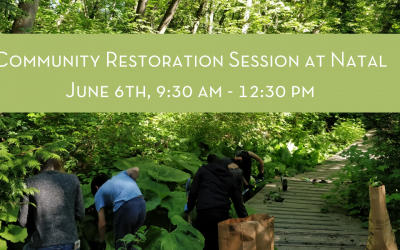 Community Restoration Session at Natal