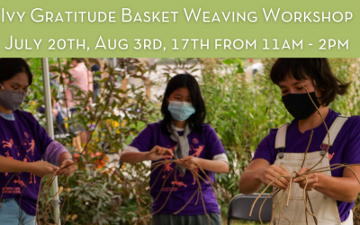 Ivy Gratitude Basket Weaving Workshops